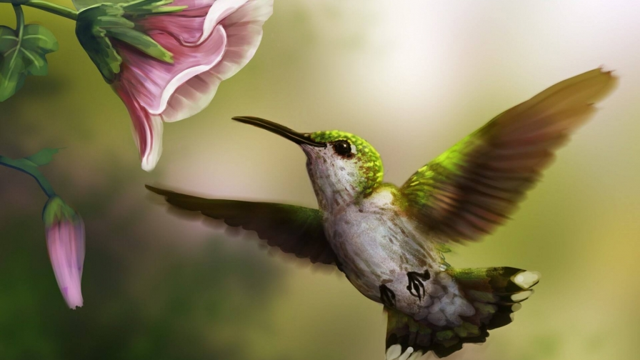 A Bird And A Flower Artistic Work Paintings 2560x1600 QHD Wallpaper 1