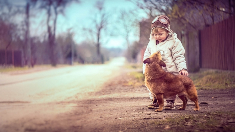 A Dog And A Boy   Photography HD Wallpaper