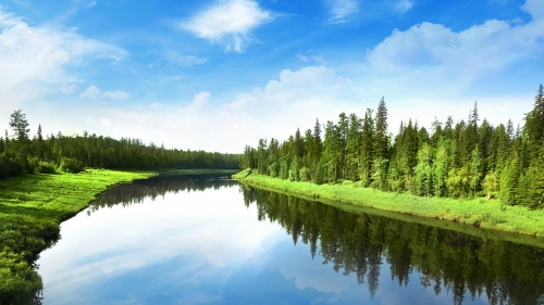 A Rive Passing Through The Green Valley Reflecting The Blue Sky Nature QHD Wallpaper