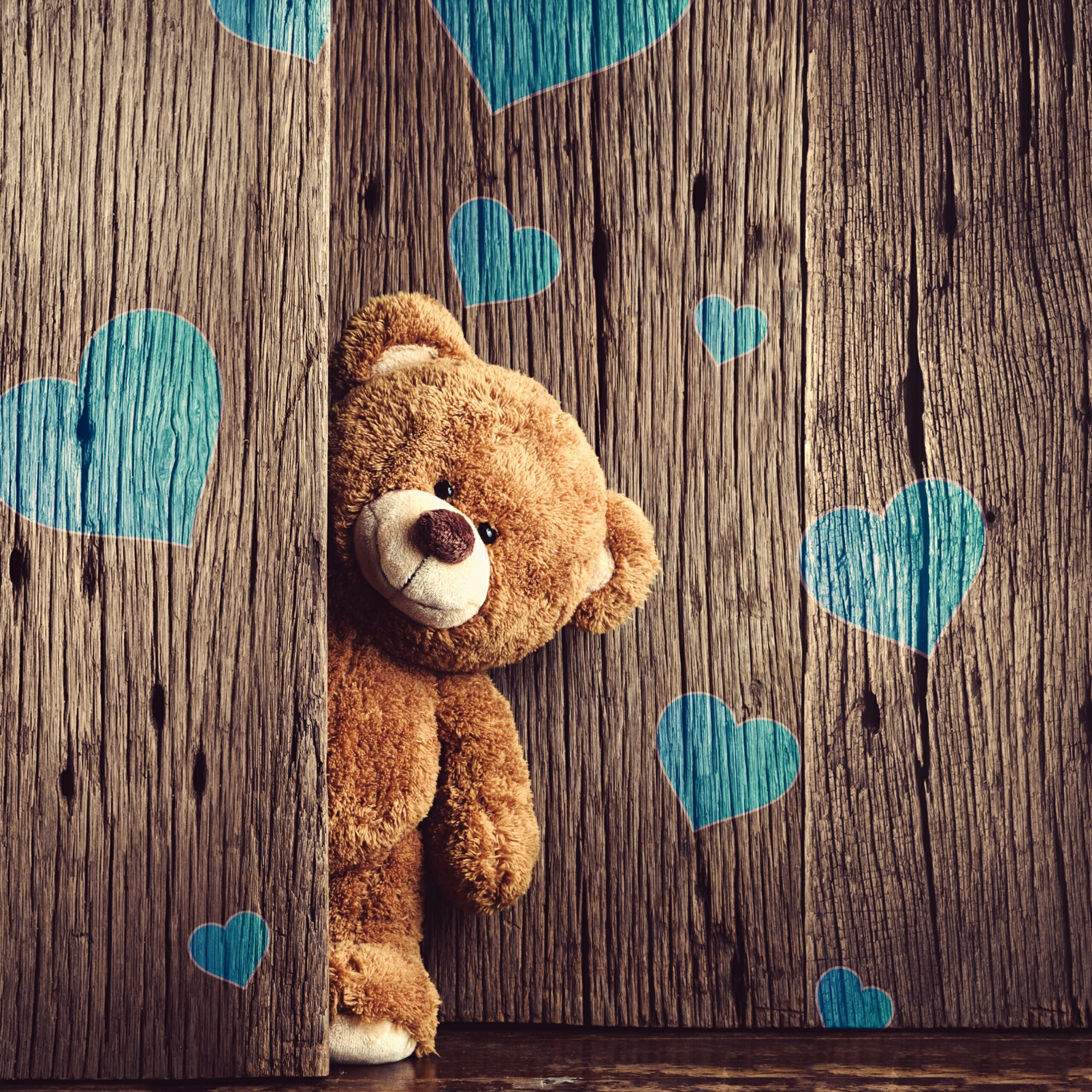 A Teddy Bear With Blue Hears On The Wall Valentines Day Events Qhd