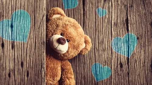 A Teddy Bear With Blue Hears On The Wall Valentines Day Events QHD Wallpaper