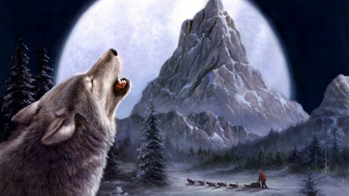 A Wolf In The Snowy Mountains Artistic Work Paintings 2560x1600 QHD Wallpaper 52