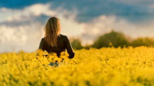 A Woman Wearing Black Leather Jacket Standing In The Yellow Field Looking Over The Horizon