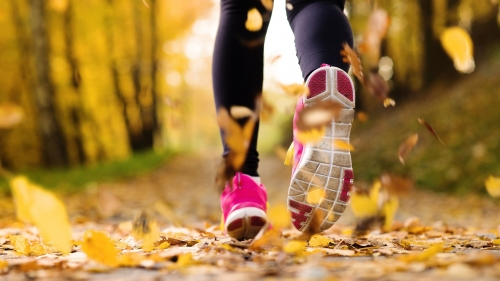 A Woman Wearing Pink Shoes Running On The Road With Autumn Leaves Health HD Wallpaper