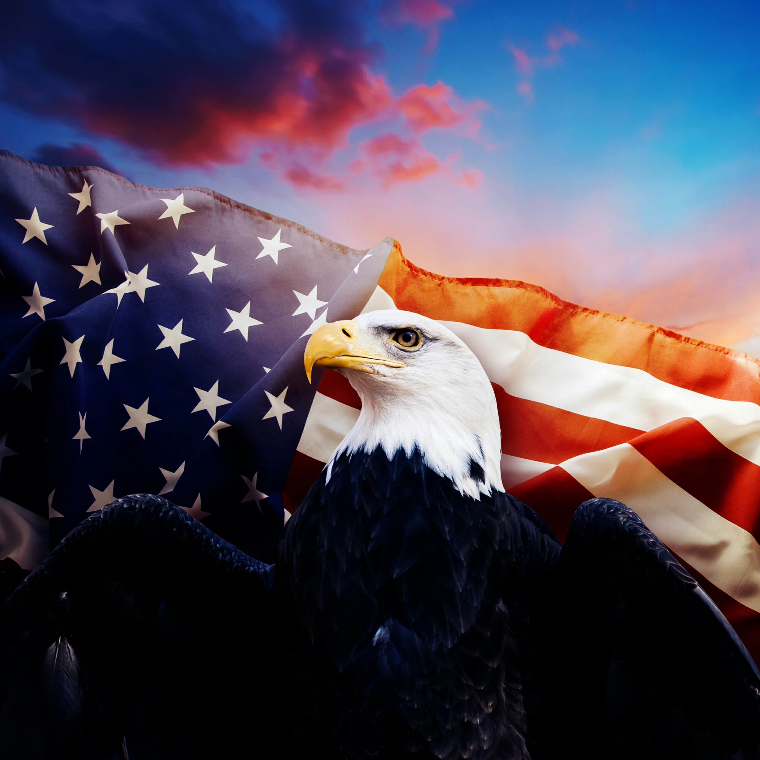 American Eagle USA Independence Day 4th July Events QHD