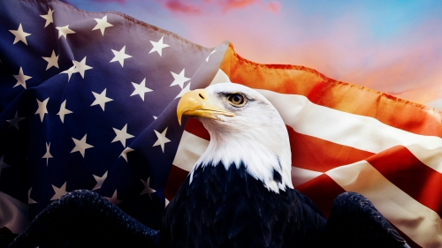 American Eagle USA Independence Day 4th July Events QHD Wallpaper