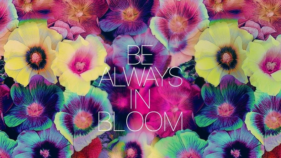 Be Always In Bloom Quotes QHD Wallpaper