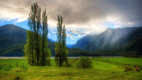 Beautiful Landscape World Travel New Zealand HD Wallpaper