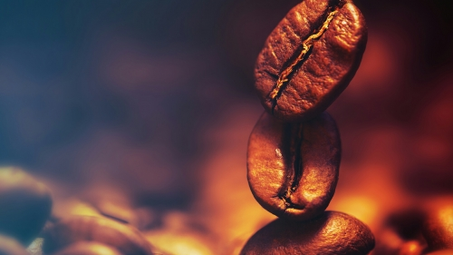 Coffee Beans Photography QHD Wallpaper 3