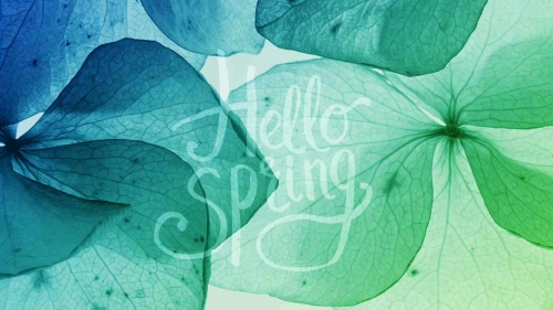 Hello Spring Green Leaves Abstract QHD Wallpaper