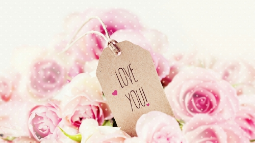 I Love You Note With Pink Roses Valentines Day Events QHD Wallpaper