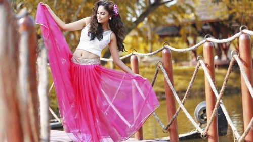Nandita Shwetha Indian Bollywood Film Actress High Quality Wallpaper