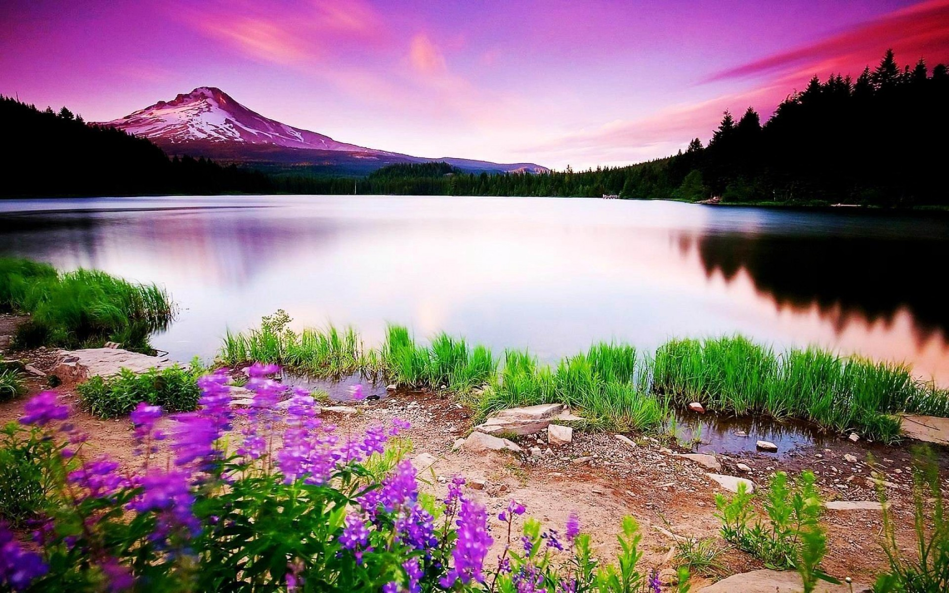 Natural Beauty Wallpapers: Natural Beauty Nature HD Wallpaper No. 0093 1920x1200