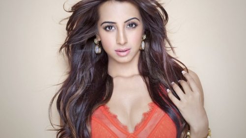 Sanjana Galrani Indian Bollywood Film Actress High Quality Wallpaper