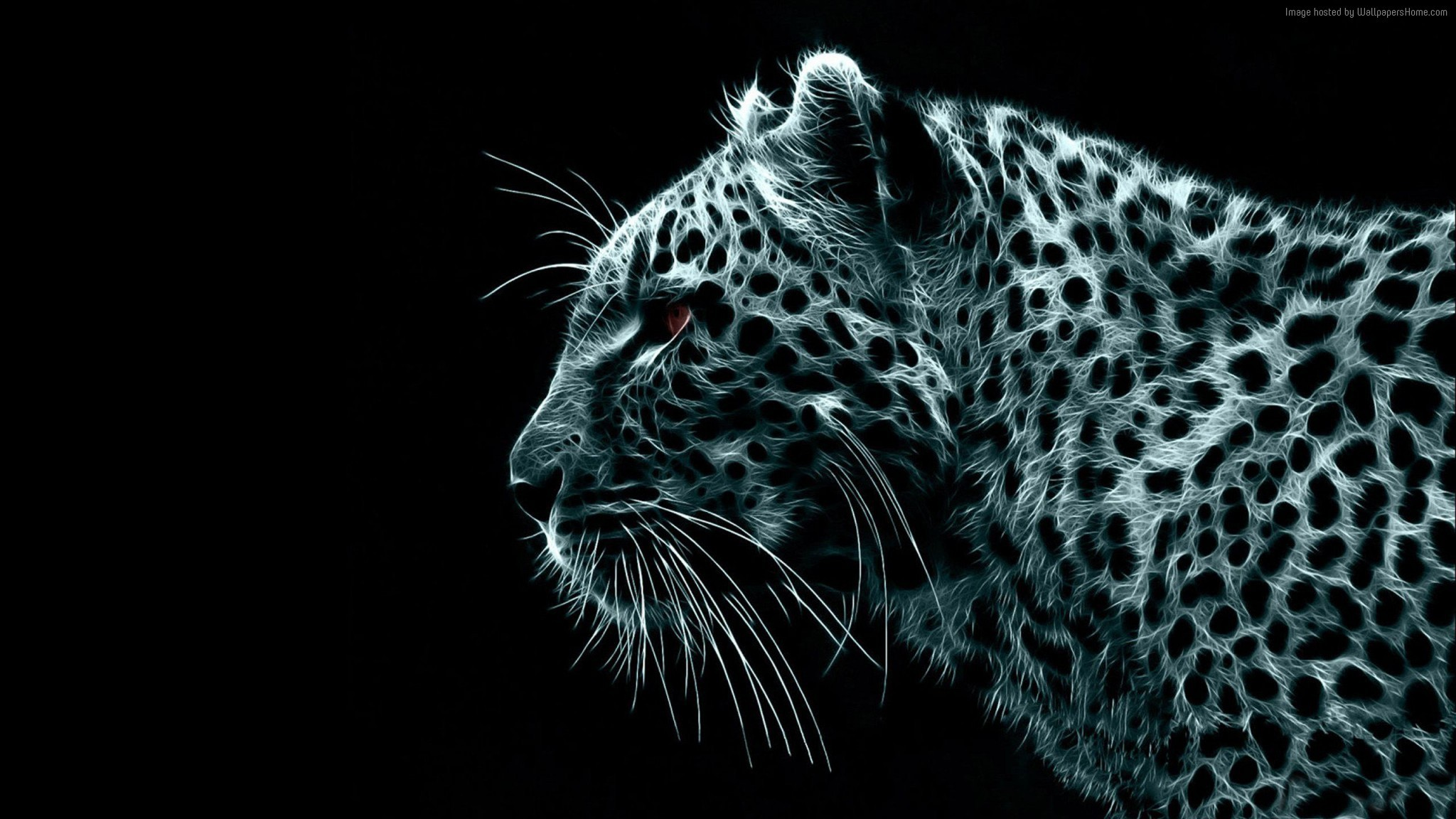 Snow Leopard Art Animal HD Wallpaper