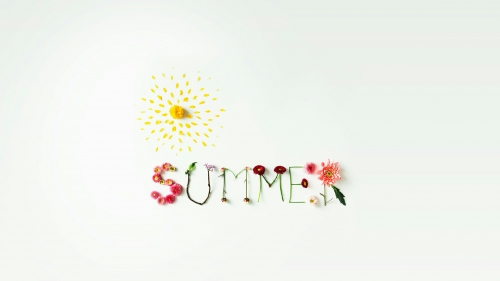 Summer Is Here Nature QHD Wallpaper