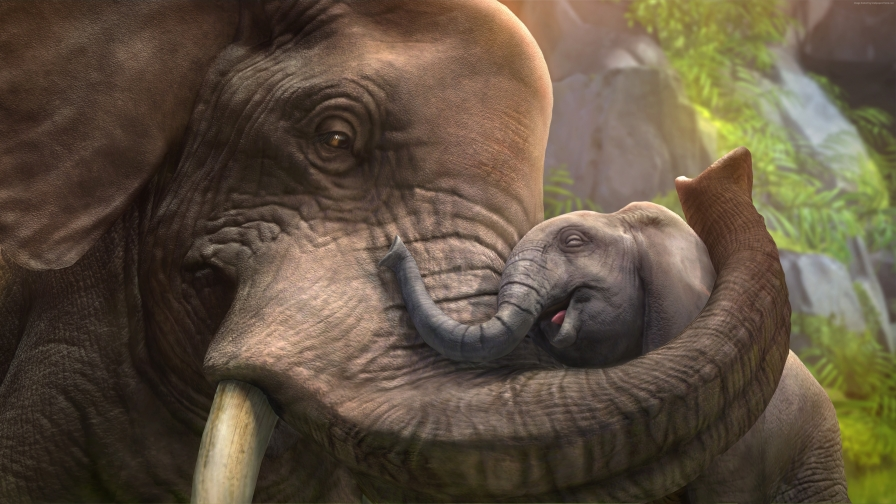 The Elephant Love   Animal HD Wallpaper