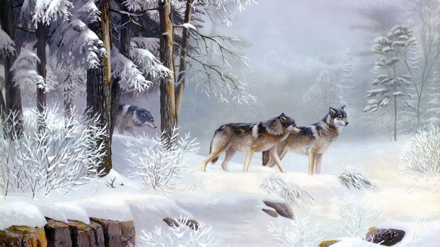 Three Wolves In The Snow Artistic Work Paintings 2560x1600 QHD Wallpaper 88