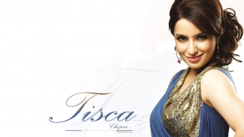 Tisca Chopra Indian Bollywood Film Actress High Quality Wallpaper